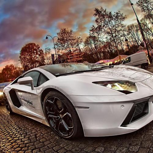 White Lamborghini Advenrador on street wallpaper