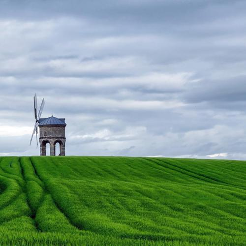 Windmill green fields wallpaper