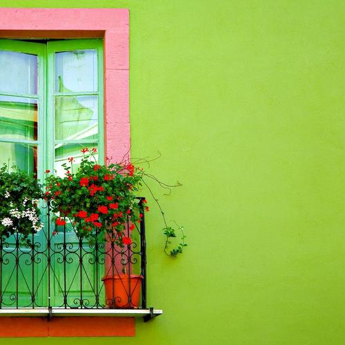 Window In Green