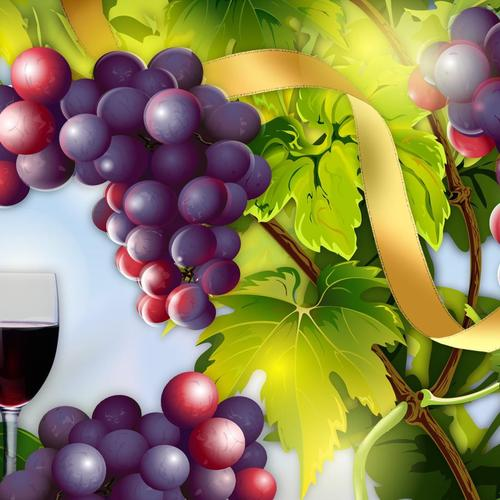 Wine and grapes vector wallpaper