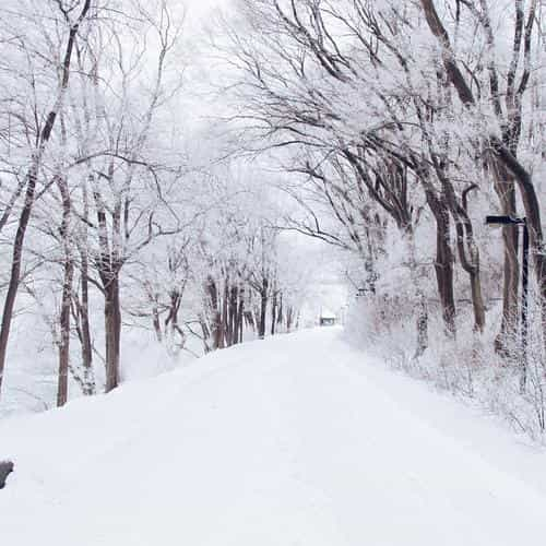 winter road romantic nature mountain snow white