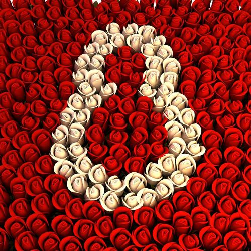 Women day 8 March with hundred roses celebrations
