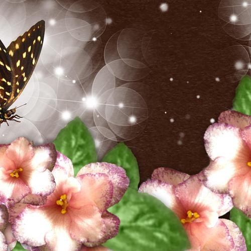 Wonderful Butterfly wallpaper