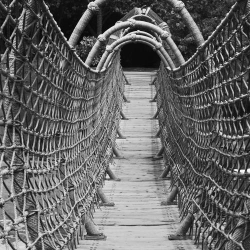 Wonderful wood rope bridge