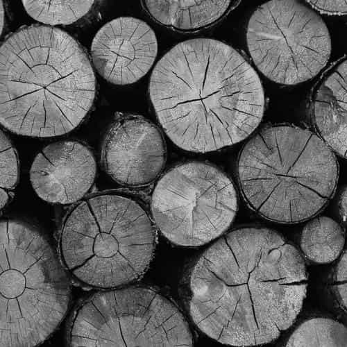 wood nature cut pattern dark bw