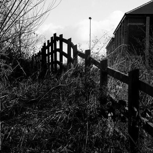 Wooden fence in black and white shot wallpaper