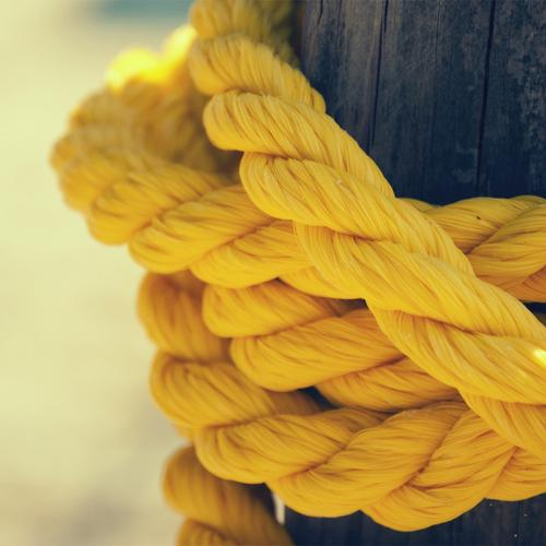 Yellow rope on the tree