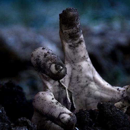 Zombie hand rising from grave